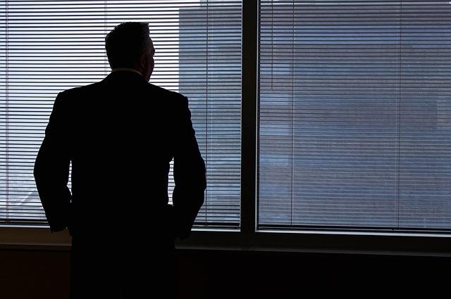 Business, Man, Business Man, Businessman, Window