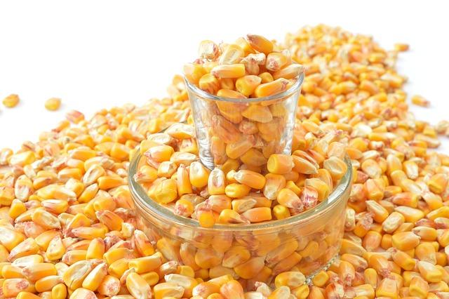 Grains, But, Glass Pot