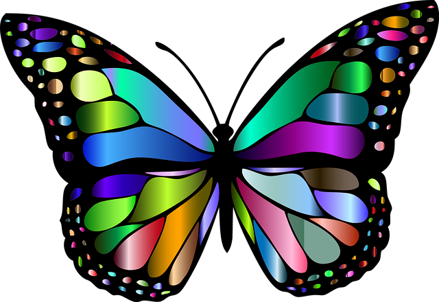 Animal, Butterfly, Chromatic, Colorful, Flying, Insect