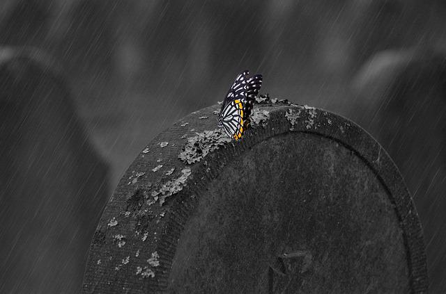 Tombstone, Cemetery, Grave, Butterfly, Gloomy, Hope