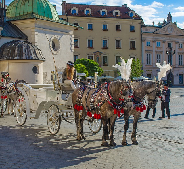 Krakow, Polga, Europe, Wagon, Cab, Horse, Area, Center