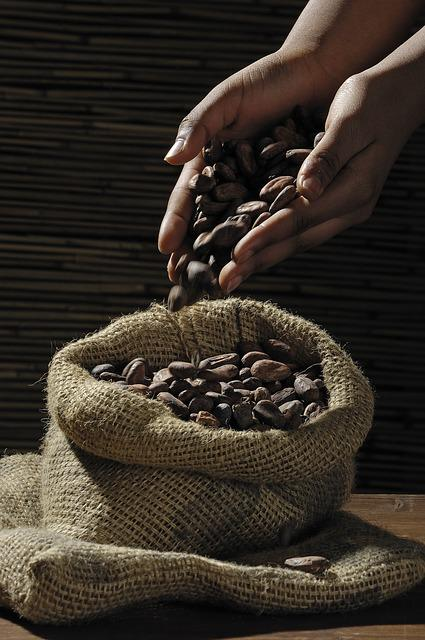 Cocoa Beans, Cocoa, Cacao, Candy, Chocolate