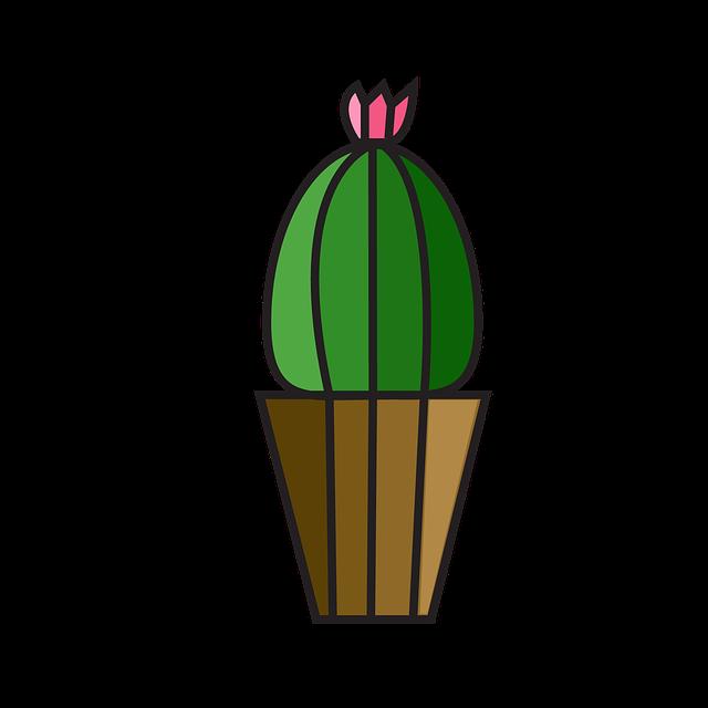 Cactus, Plant, Cacti, Flower, Botanical, Botany