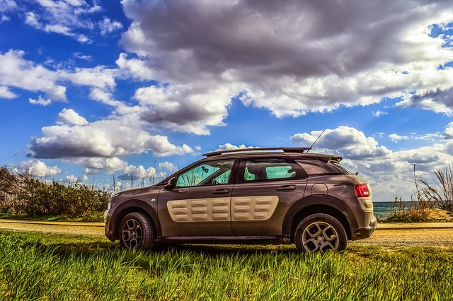 Car, Vehicle, Automobile, Sport, Citroen, Cactus