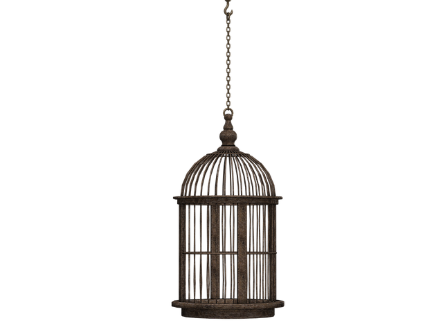 Cage, Bird Cage, Closed Container, Braid, Chain