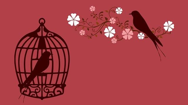 Bird, Bird Cage, Cage, Birdcage, Lovebirds, Red, Love