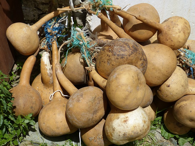 Calabash, Pumpkin Art, Cucurbitaceae