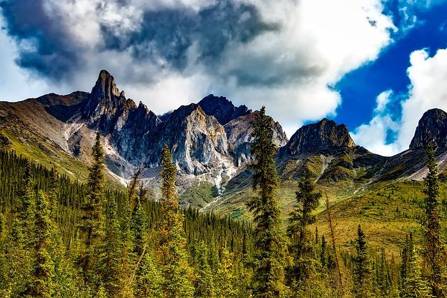 California, Yosemite, National Park, Landscape, Scenic