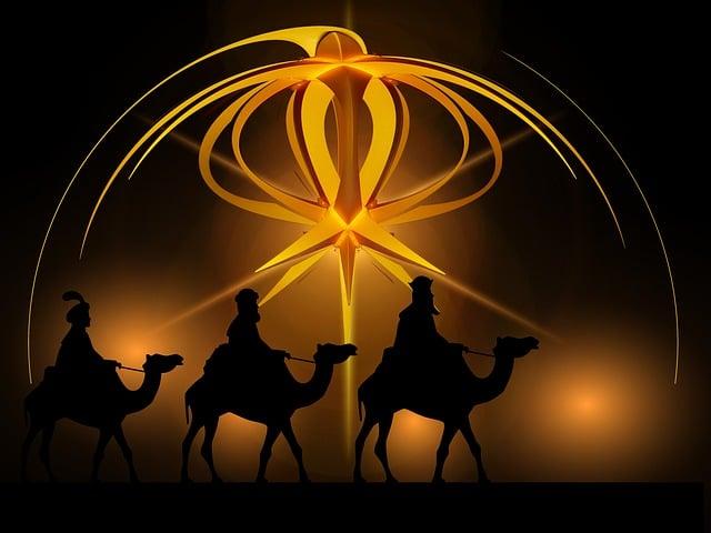 Advent, Star, Holy Three Kings, Kings, Camel, Christmas