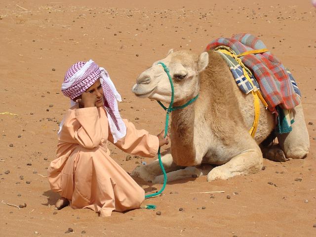 Bedouin, Camel, Desert, Nature, Sand, Camel-driver