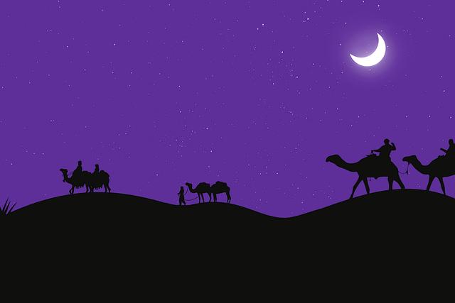 Camels, Desert, Moon, Cameleer, Camel Ride