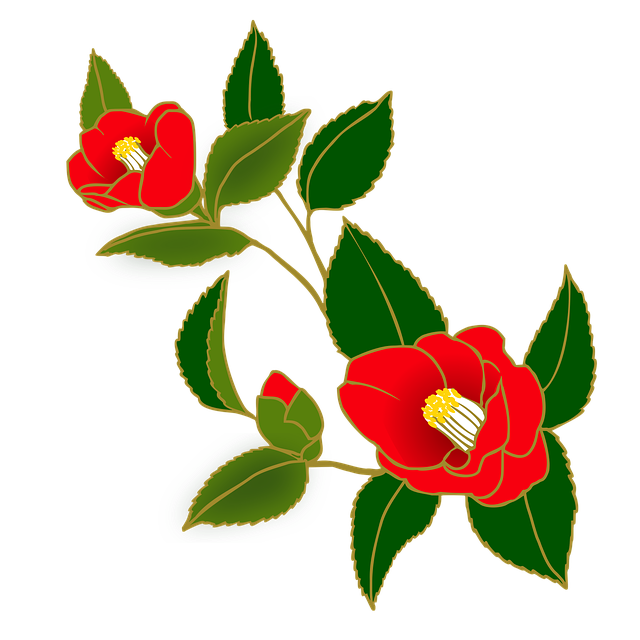 Camellia, Flowers, Red, Japanese Style, Winter