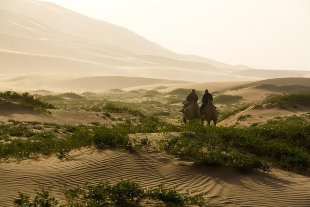 Desert, Camel, Camelride, Sand, Dune, Travel, Landscape