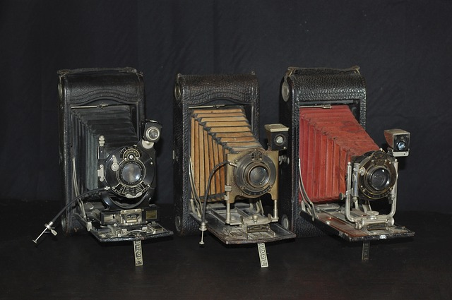 Photo Camera, Old, Camera, Collector, Old Camera