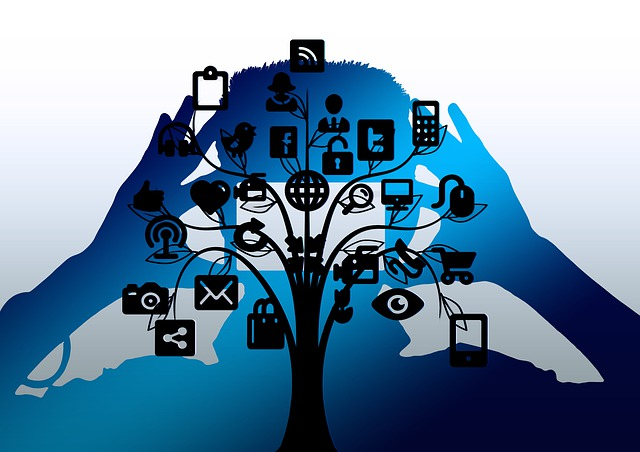 Tree, Structure, Man, Smartphone, Camera, Networks