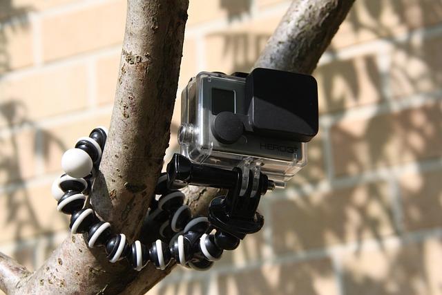 Go Pro, Sport, Camera, Tree