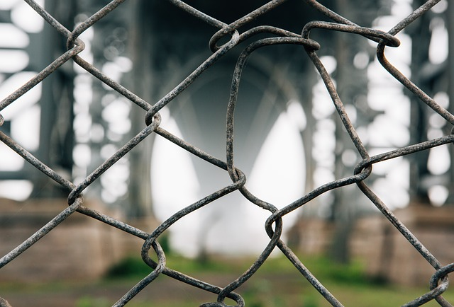 Barbed Wire, Barrier, Blur, Camp, Close-up, Fence, Hard