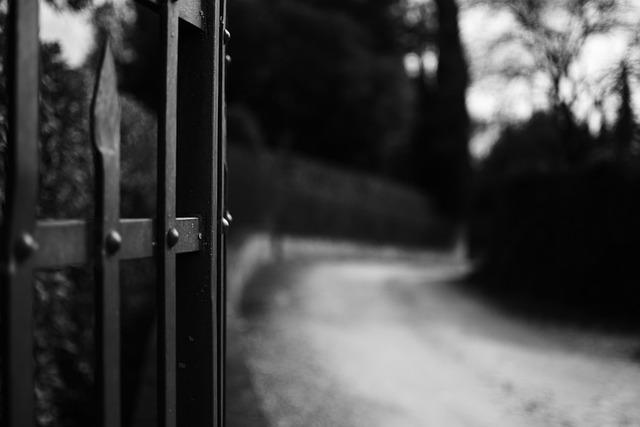 Road, Gate, White Black, Photo, Campaign