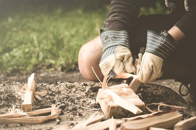 Make Fire, Adults, Camping, Firewood, Grass, Leisure
