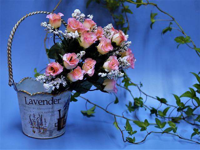 Rose, Bud, Pink, Handbag, Can, Display, The Vine, Ivy