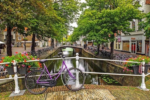 Canal, River, Bridge, Bike, Tree, Landscape, Delft