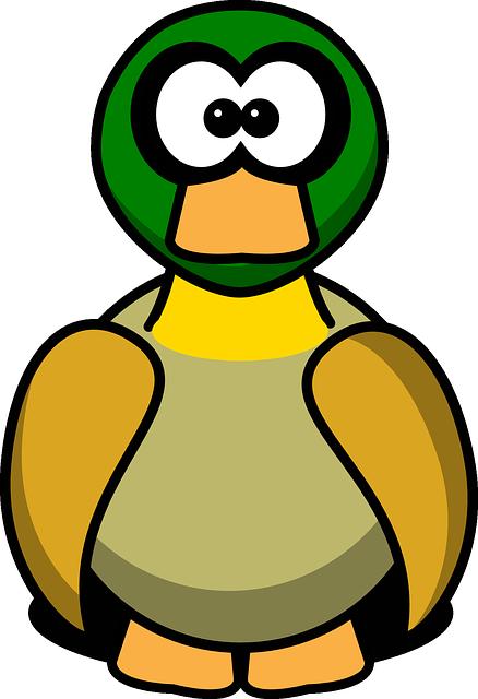 Canard, Duck, Bird, Animal, Funny, Cute