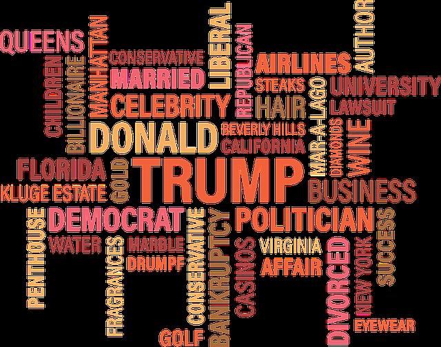 Donald J Trump, Blog, Candidate, Presidential