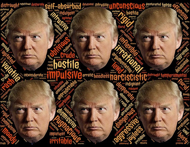 Trump, Trumpism, Candidate, Narcissist, Disturbing