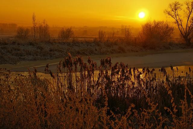 River, Winter, Sunset, Light, Frost, Golden Hour, Cane