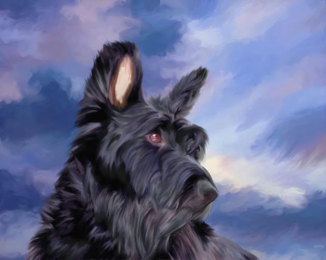 Max, Dog, Canine, Animal, Doggie, Puppy, Pet, Cute