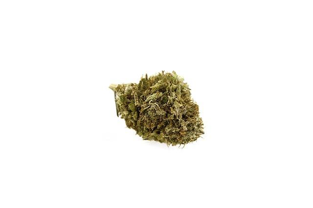 Marijuana, Cannabis, Bud
