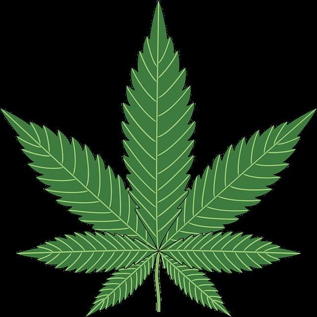 Baking, Cannabis, Hemp, Leaf, Marijuana, Plant, Pot