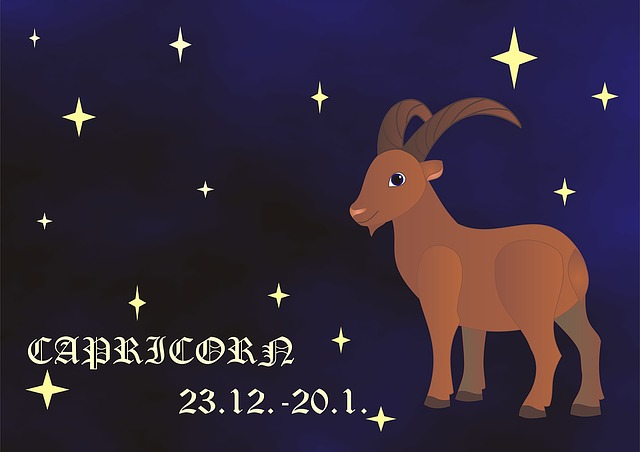 Capricorn, Zodiac, Horoscope, Sign Of The Zodiac, Sign