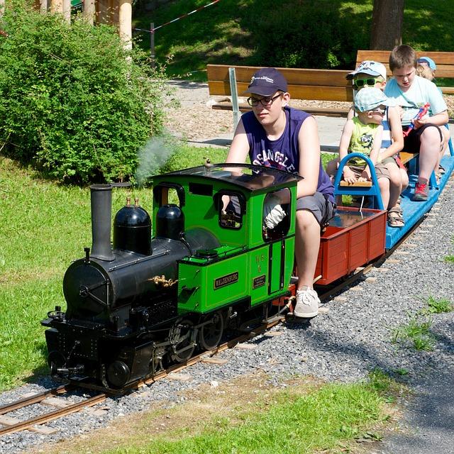 Driving Pleasure, Steam Railway, Miniature, Carbon