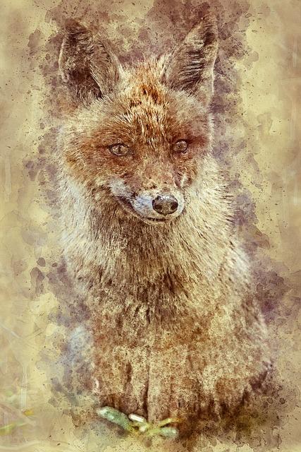 Fox, Crafty, Wild, Fauna, Carnivorous, Sitting, Animal