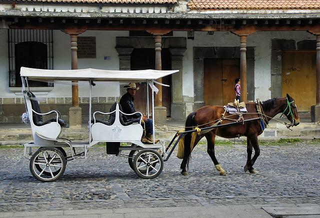 Mexico, Puebla, Carriage, Vehicle, Drawn, Horse, Cart