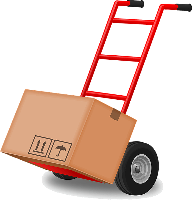 Carry, Dolly, Hand Truck, Tool, Transportation