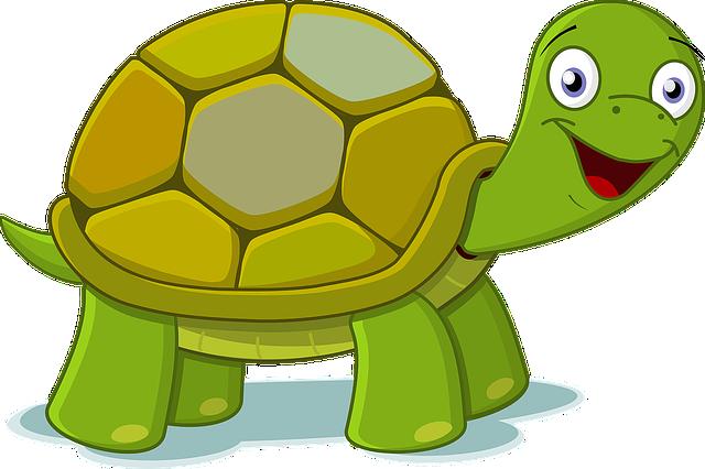 Animals, Cartoon, Green, Happy, High Quality, Tortoise