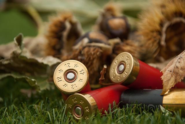 Cartridges, Weapon, Rifle Ammunition