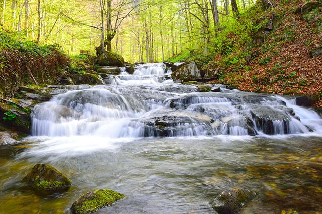 Water, Stream, Nature, River, Waterfall, Cascade
