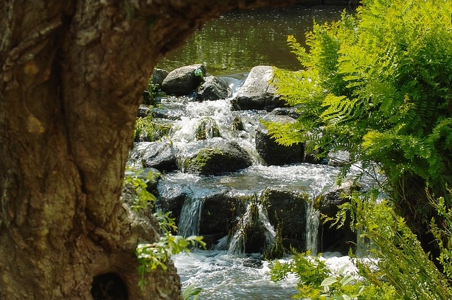 Water, River, Cascade, Nature, Water Courses, Waterfall