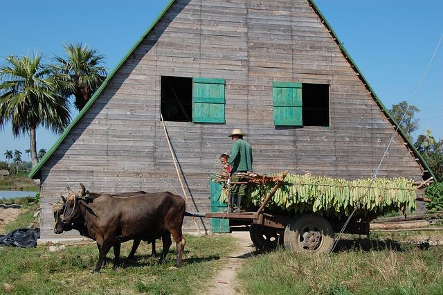 Cuba, Tobacco, Castro
