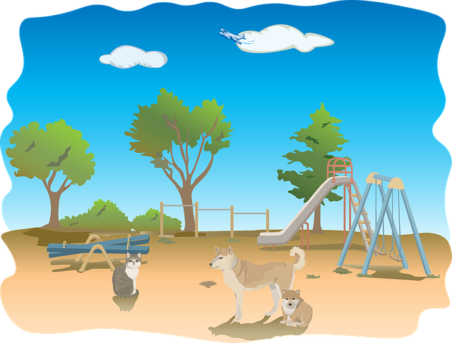 Playground, Animals, Dog, Cat, Tree, Sky, Sun, Nature