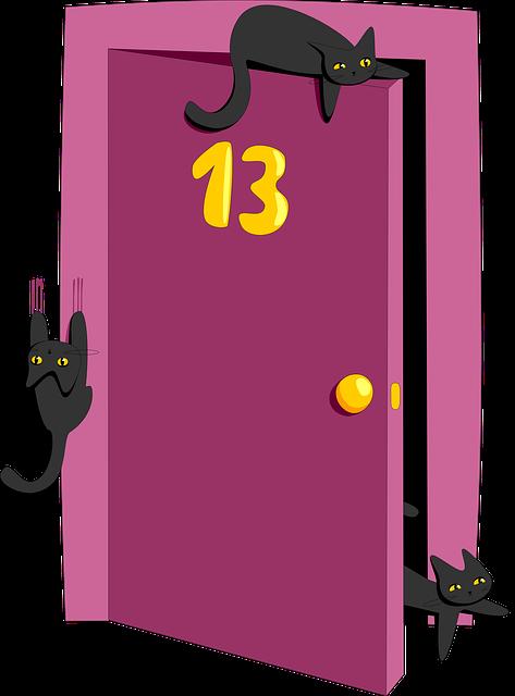 Superstition, Failure, Thirteen, Cat, Black, 13, Door