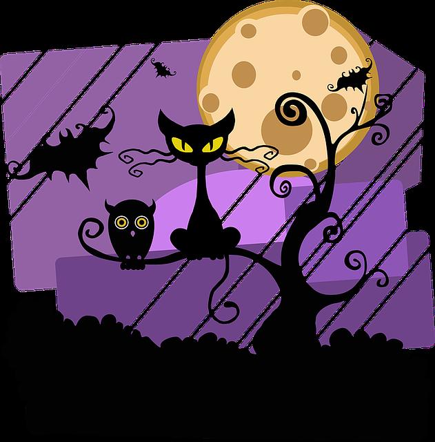 Night, Halloween, Moon, Cat, Tree, Outside, Owl, Bat