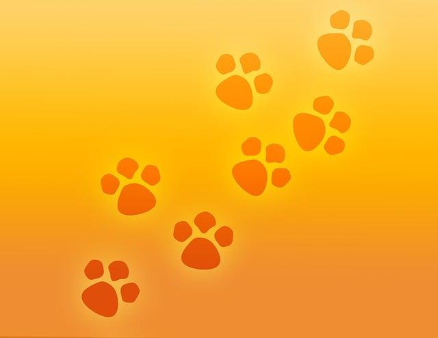 Paw Print, Paws, Prints, Pet, Dog, Animal, Cat, Foot