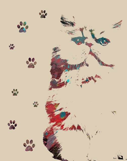 Animal Art, Cat Print, Feline, Paw Prints