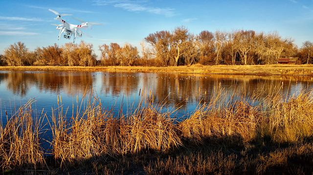 Aerial, Aerial Photography, Aerial Video, Cattails