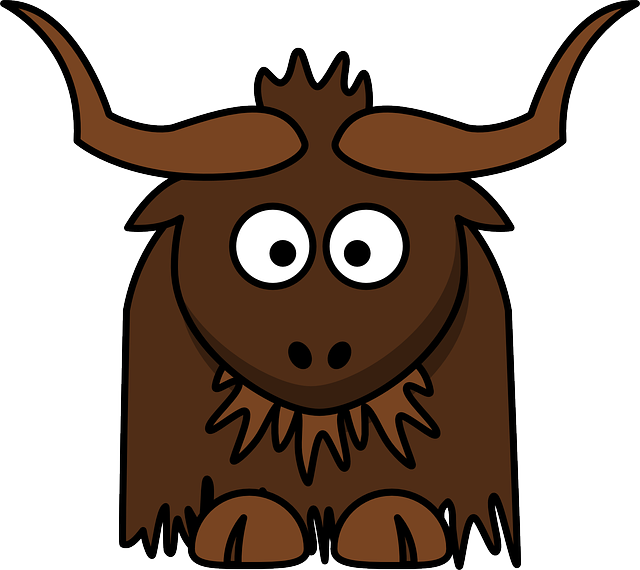 Asia, Bovine, Cattle, Himalaya, Yak, Animal, Brown