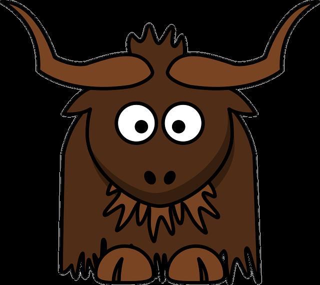 Asia, Bovine, Cattle, Himalaya, Yak, Animal, Brown
